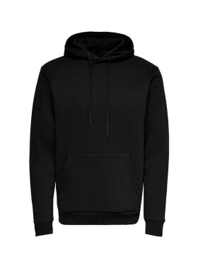 Only and Sons - ONSCERES LIFE HOODIE SWEAT NOS